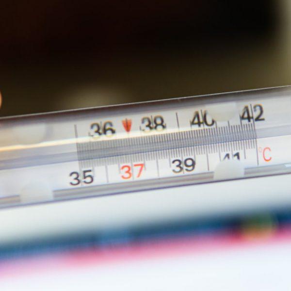 Termometr analogowy – dlaczego warto go mieć?